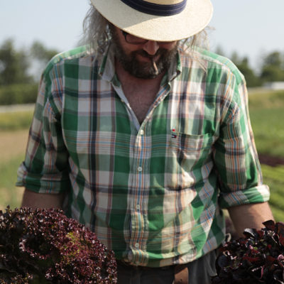 Michael loves the Salad fields because they are so colourful, they have so many different textures and those beautiful lettuces look like giant roses.