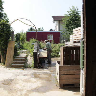 The washing and preparation of the vegetables all takes place at the farm house in Gundelfingen.