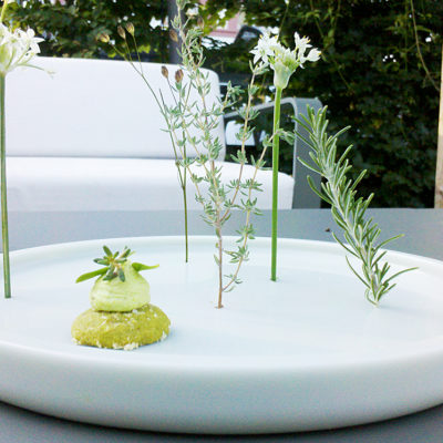 Amuse - bouche - it's all about herbs in the little herb forrest.
