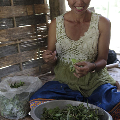 This wonderful lady and owner of the papaya farm picked some wild greens and steamed them for our lunch.